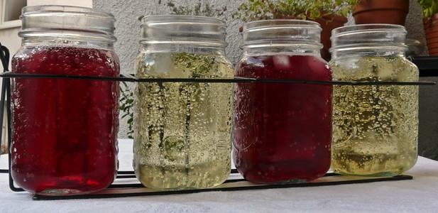 Selbstgemachte, schnelle Verjus-Limonaden: mit Traubensaft oder Minze und Apfeldicksaft