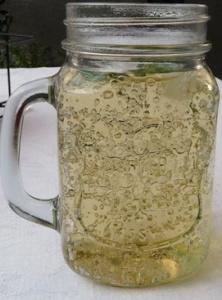 Verjus-Limonade mit Minze und Apfeldicksaft